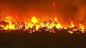 Le gouvernement lance caravane nationale contre les feux de brousse.